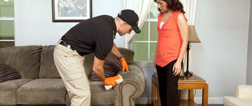 Meridian, ID carpet upholstery cleaning